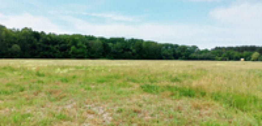 4,5 ha vom (Natur-) Paradies in ortsnaher Lage